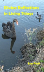 Divine Reflections in Living Things